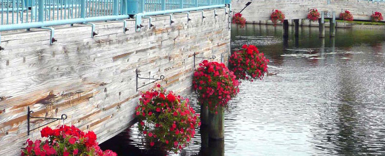Waterfront hanging baskets brighten up this otherwise dreary bridge.