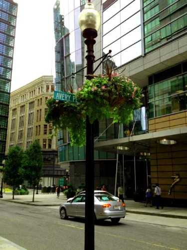 Beautifying city streets nationwide, our commercial hanging baskets can be mounted anywhere using the right brackets.