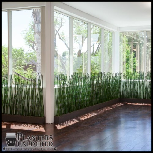 Create partial privacy while delineating spaces with artificial equisetum (horsetail reeds) in commercial planters.