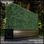 Artificial Boxwood Hedge in Black Planter