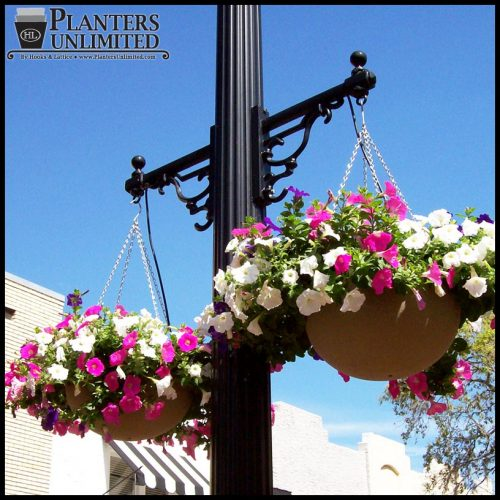 Hanging Light With Planter: Fabulous, No-Fuss Commercial Hanging Baskets: Buying And
