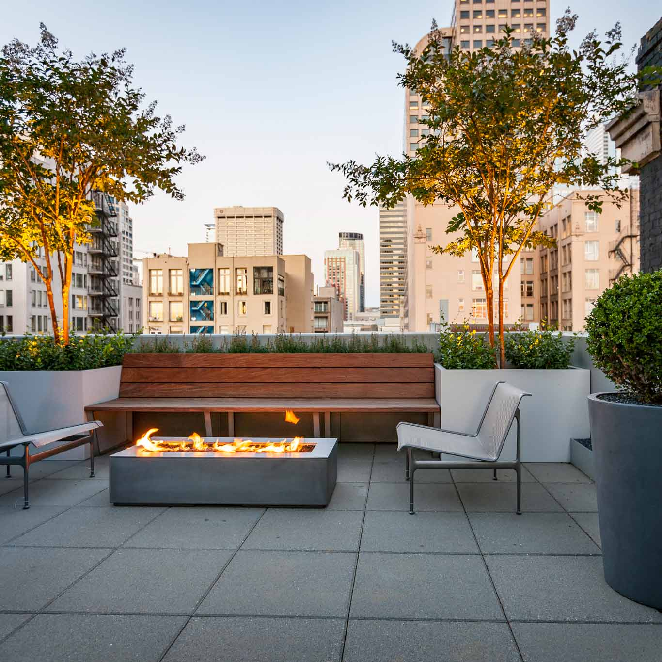 Garden Terrace Apartments: Project Profile: The Making Of A Modern Terrace Garden In